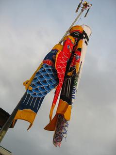 20110424-5.JPG